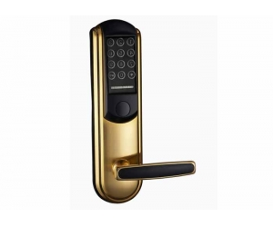 Home/Office RFID Digital Keypad Door lock PY-8831-JH